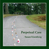 Perpetual Care<br><small style='font-weight: normal'>a book of poetry with 14 color photographs</small>